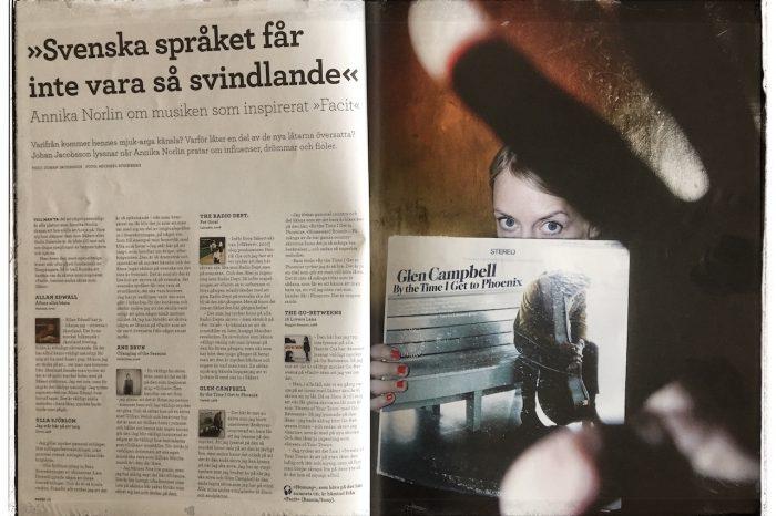 Annika Norlin: »Svenska språket får inte vara så svindlande«