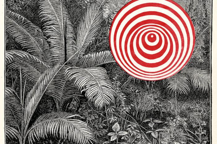 Goran Kajfeš Tropiques: Into the Wild